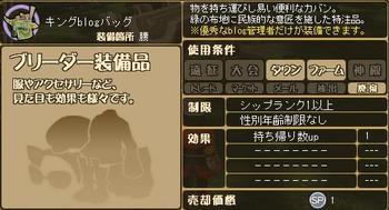 キングblogバッグの詳細.jpg